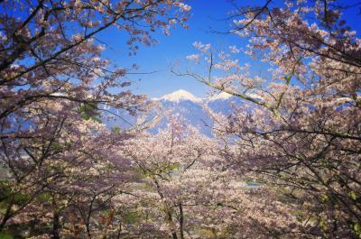 桜フレーム| 快晴で空気が澄んだ安曇野。桜越しに常念岳を望む。