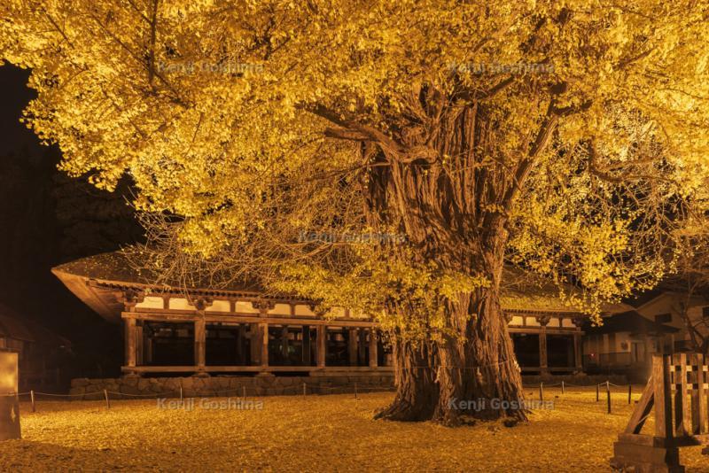 熊野神社 長床|