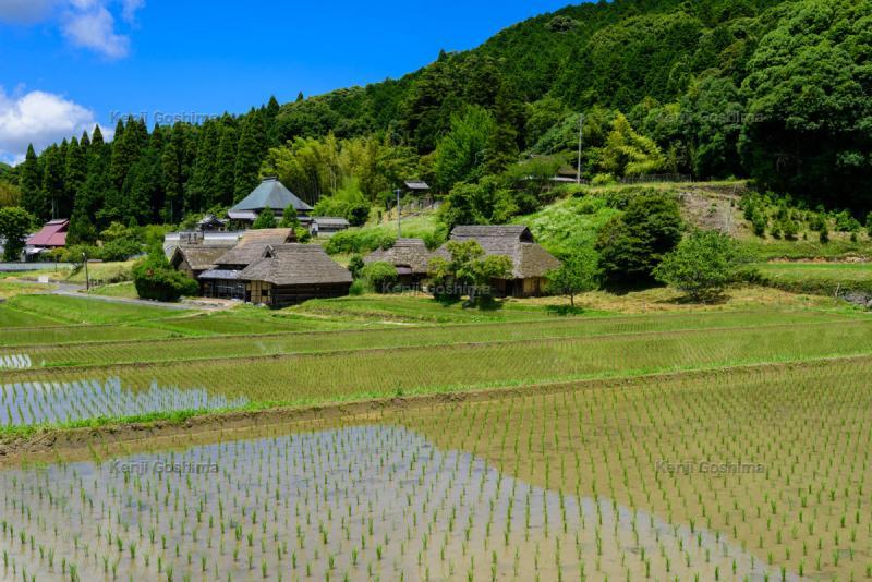 八塔寺ふるさと村」茅葺屋根の農家と田畑が広がるのどかな風景が魅力 ...