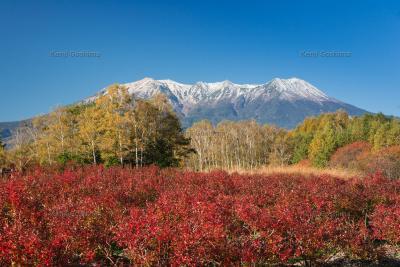 木曽馬の里 御嶽山|