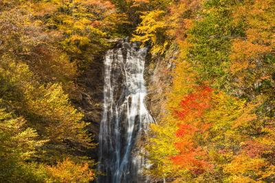 唐沢の滝|