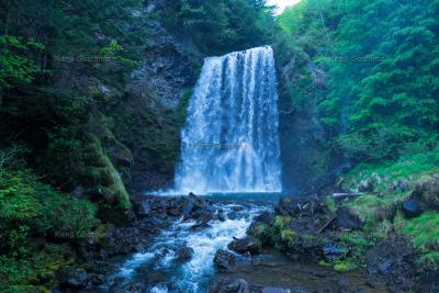 善五郎の滝|